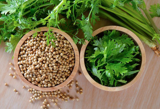 What is Coriander, does it taste the same as Cumin