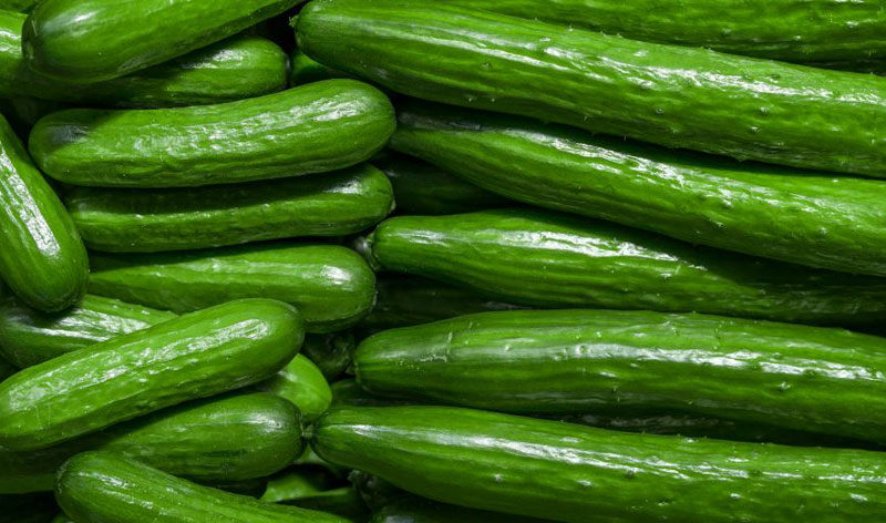 How Can You Tell if a Cucumber is Bad?