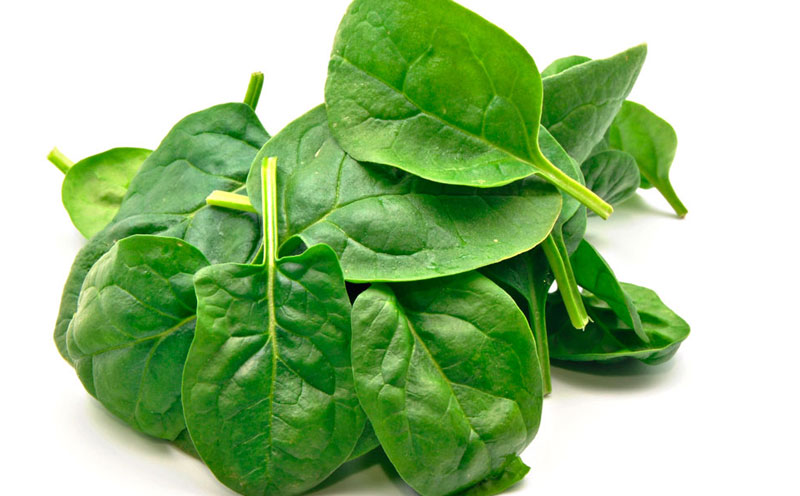 How To Store Spinach And Keep It Fresh